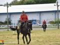 RCMP Musical Ride ©SJR_0805
