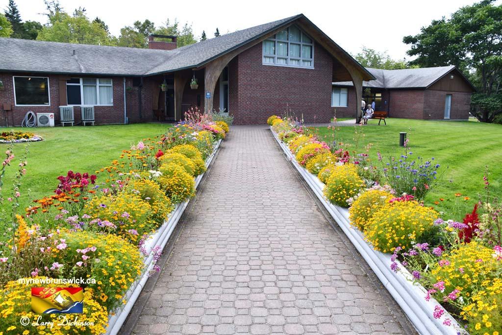 Flowers at Roosevelt Info Center©LDD_6485