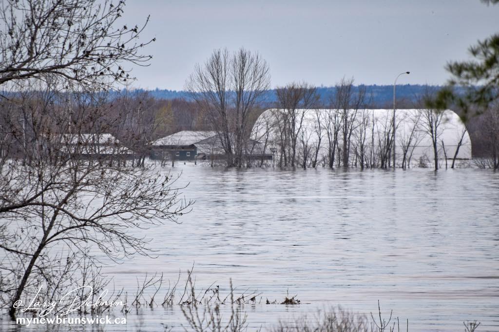 flood 2018 maugerville  farm©LDD_7560