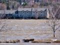 Fredericton Flood Update ©SJR_6594