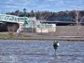 Fredericton Flood Update ©SJR_6595