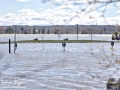 Fredericton Flood Update ©SJR_6598