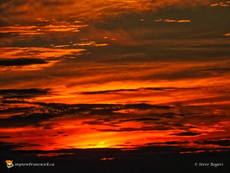 SunsetKingsclearNB20161035