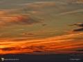 SunsetKingsclearNB20161051