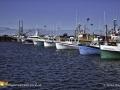 Fishing Boats Caraquet NB ©SJR_3482
