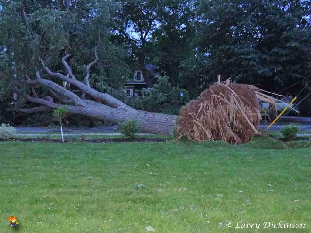 Hurricane Arthur (11)