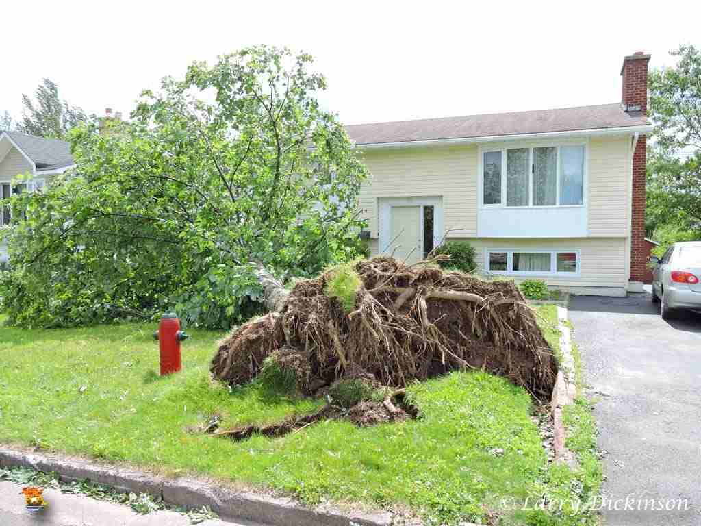 Hurricane Arthur (7)