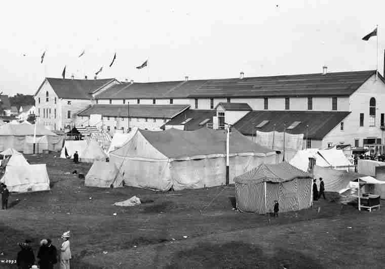 Fredericton Fair