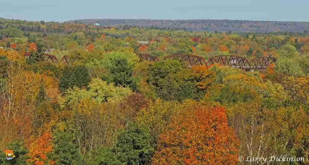Bill Thorpe Walking Bridge among the fall colours