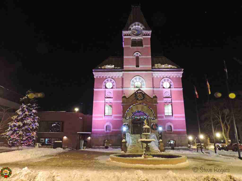 Fredericton City Hall Christmas Tree 2014