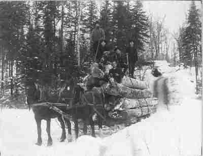 Horses and lumberjack