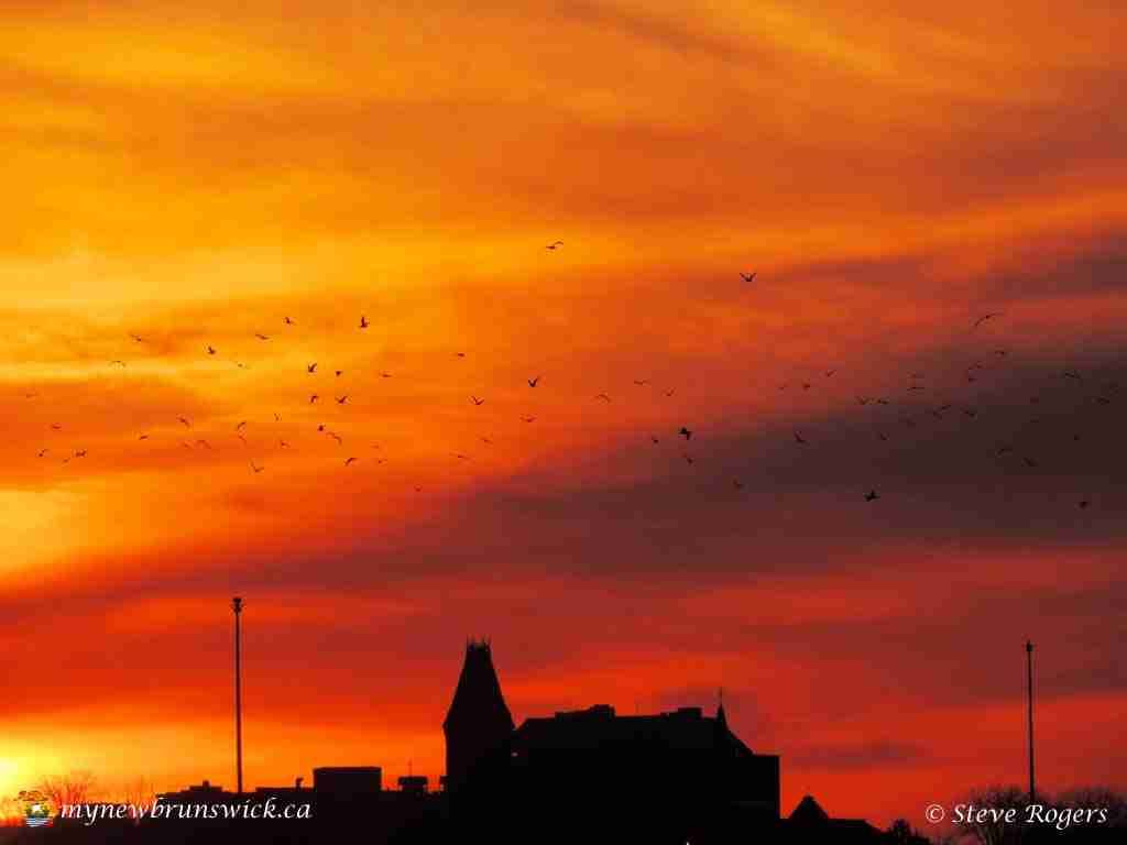 Sunset April 04