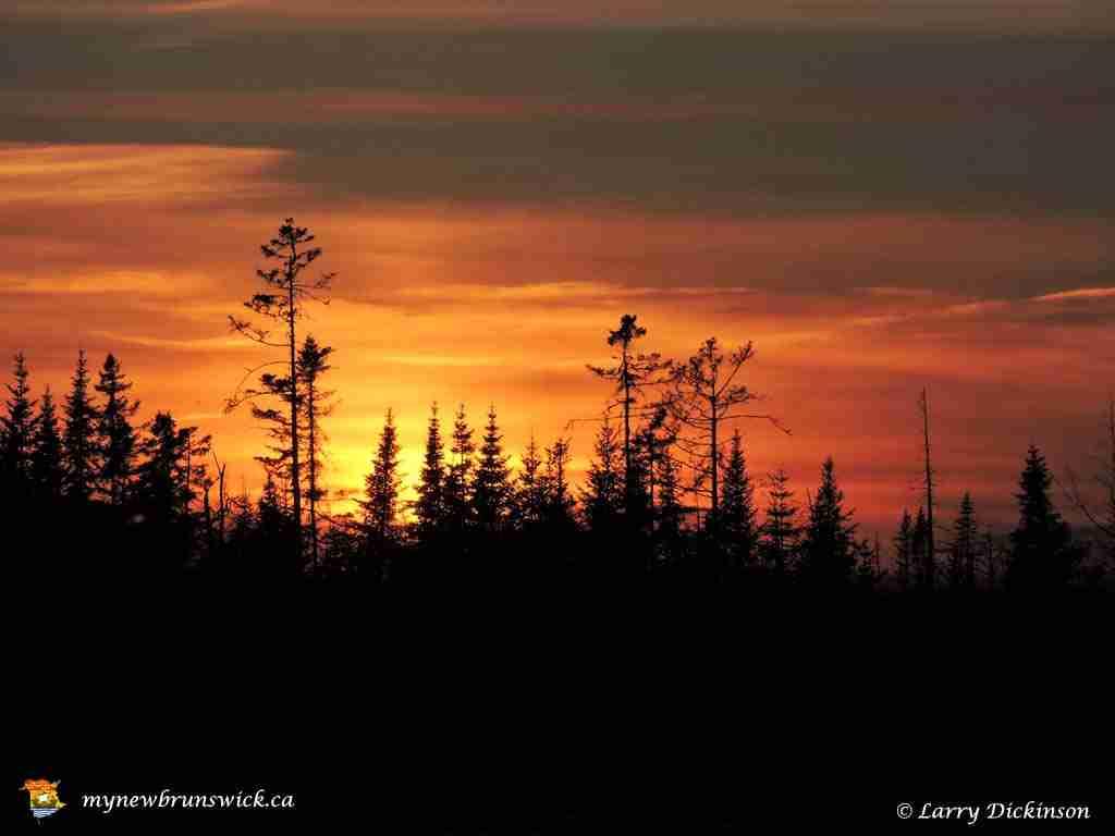 Spring Sunset 2015