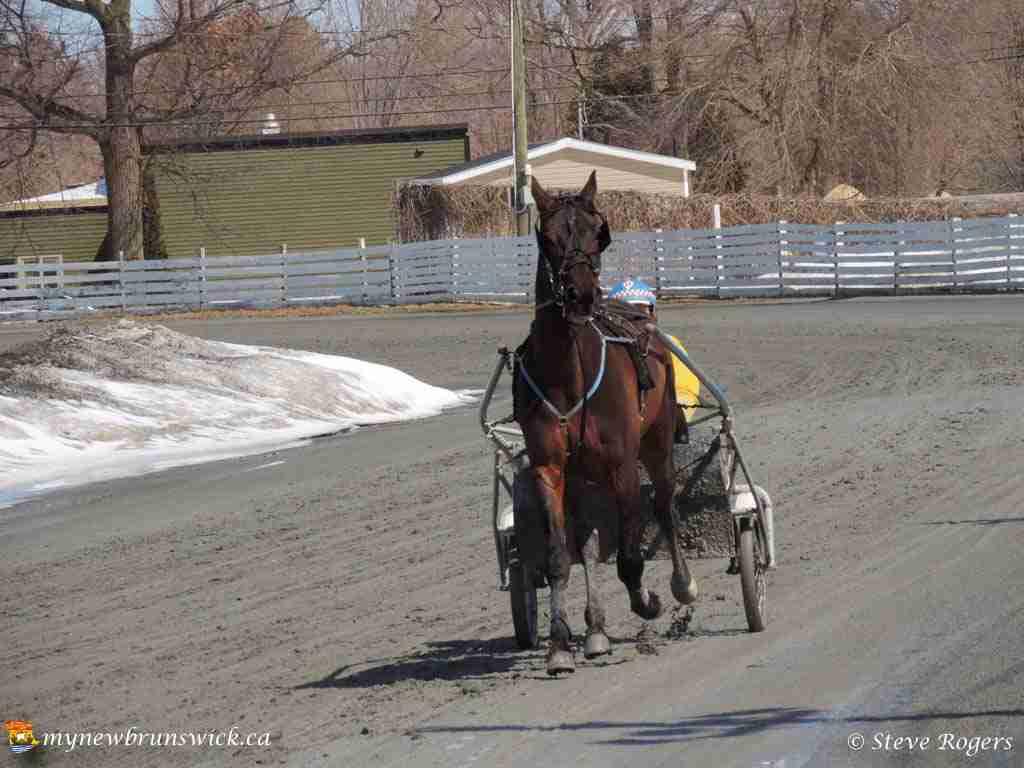 Race track 05