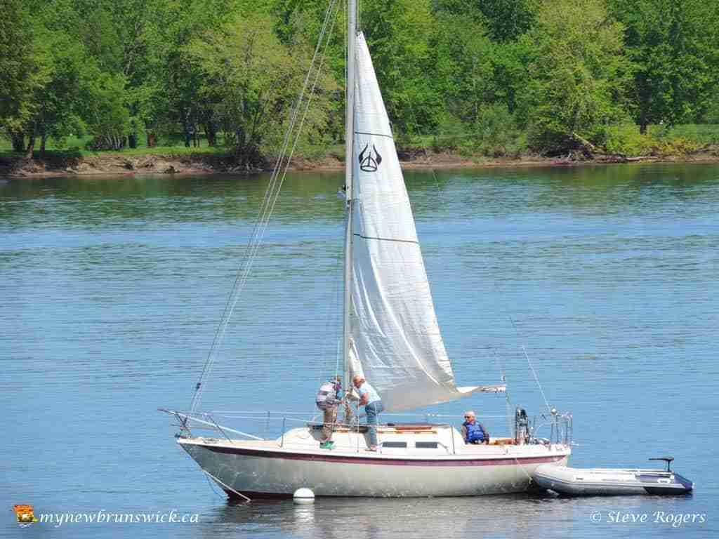 Boat Club 016