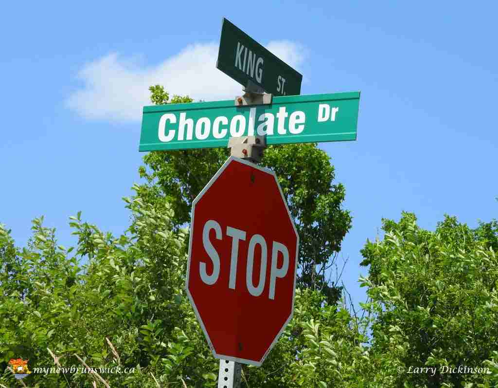 Chocolate Dr 523