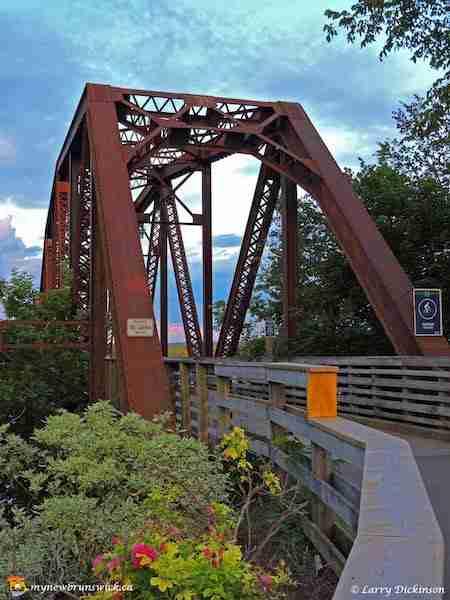 Bill Thorpe Walking Bridge in summer