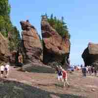 hopewell rocks 003