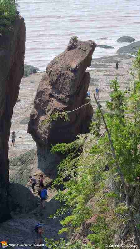 The Hopewell Rocks Ocean Tidal Exploration Site