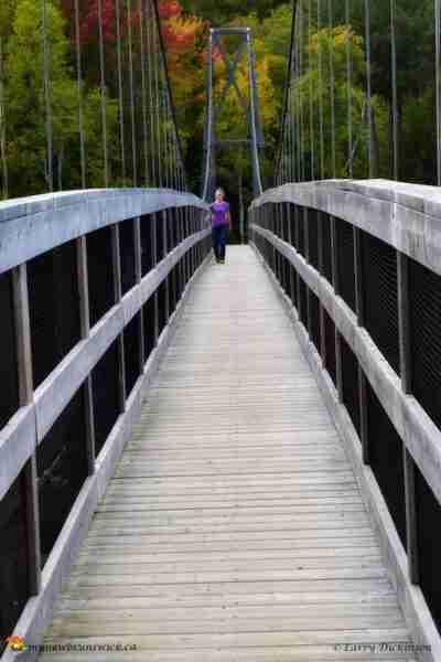 shogomoc_bridge_walker_ldd_1523