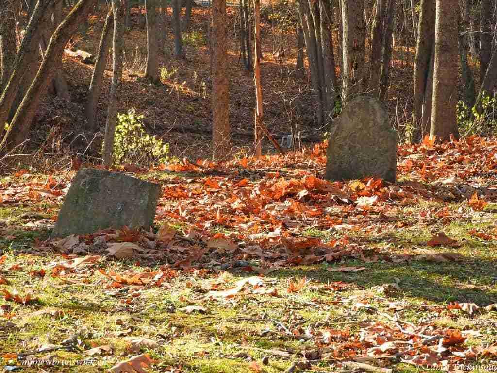 loyalist cemetery 003