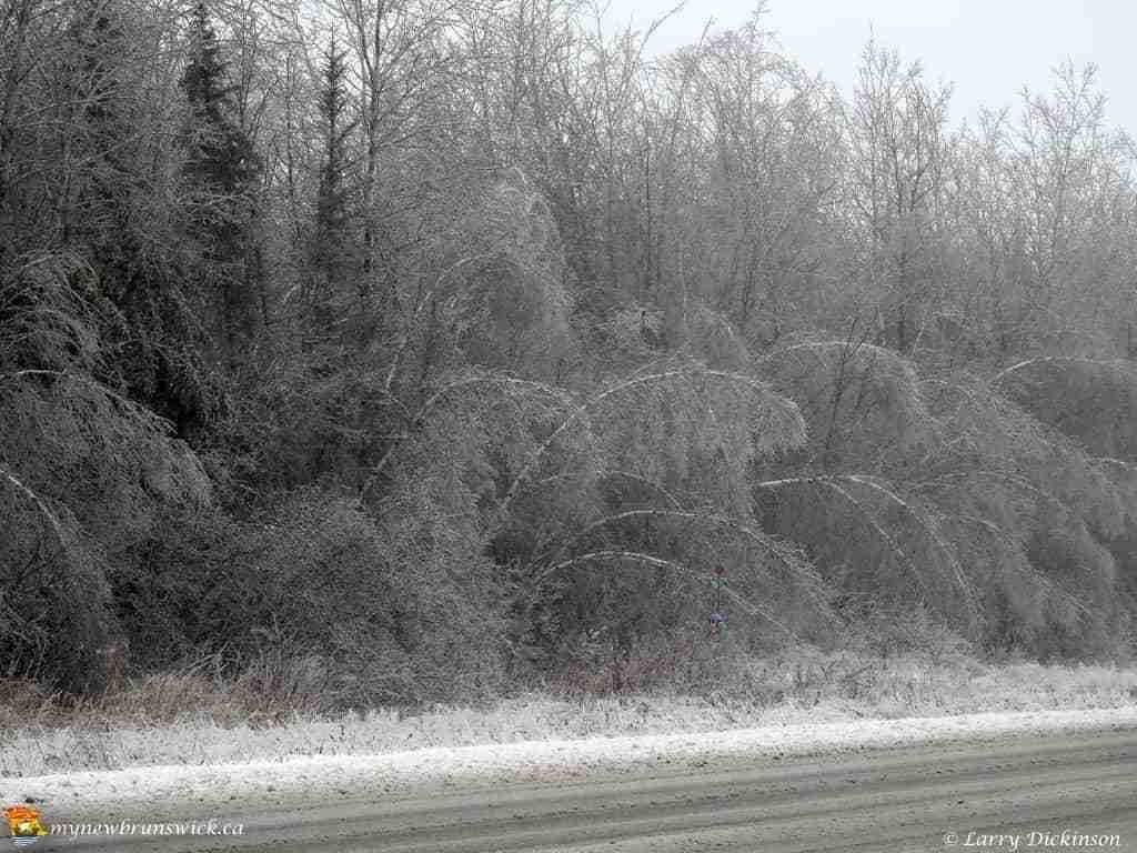 15dec-ice-storm-106