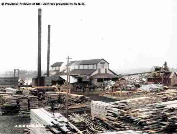 Early Fredericton Lumber Mills