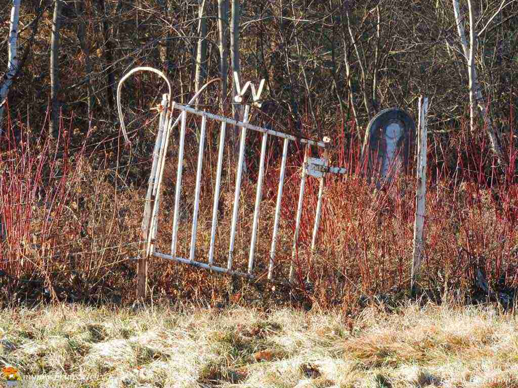 Wheary Graveyard Fredericton