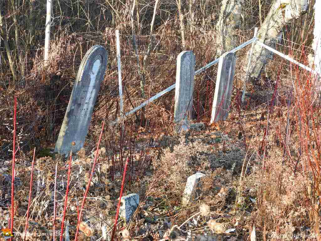 Wheary Graveyard Fredericton