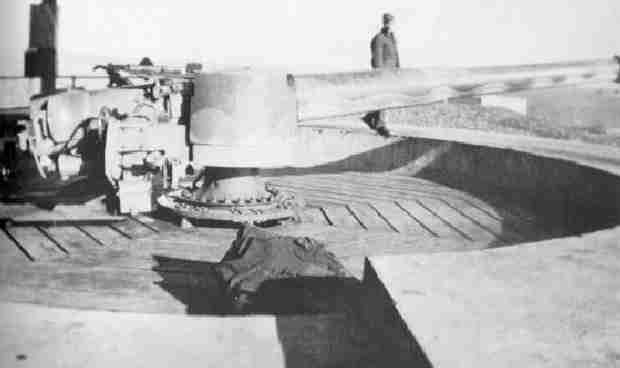 Big gun on Partridge Island