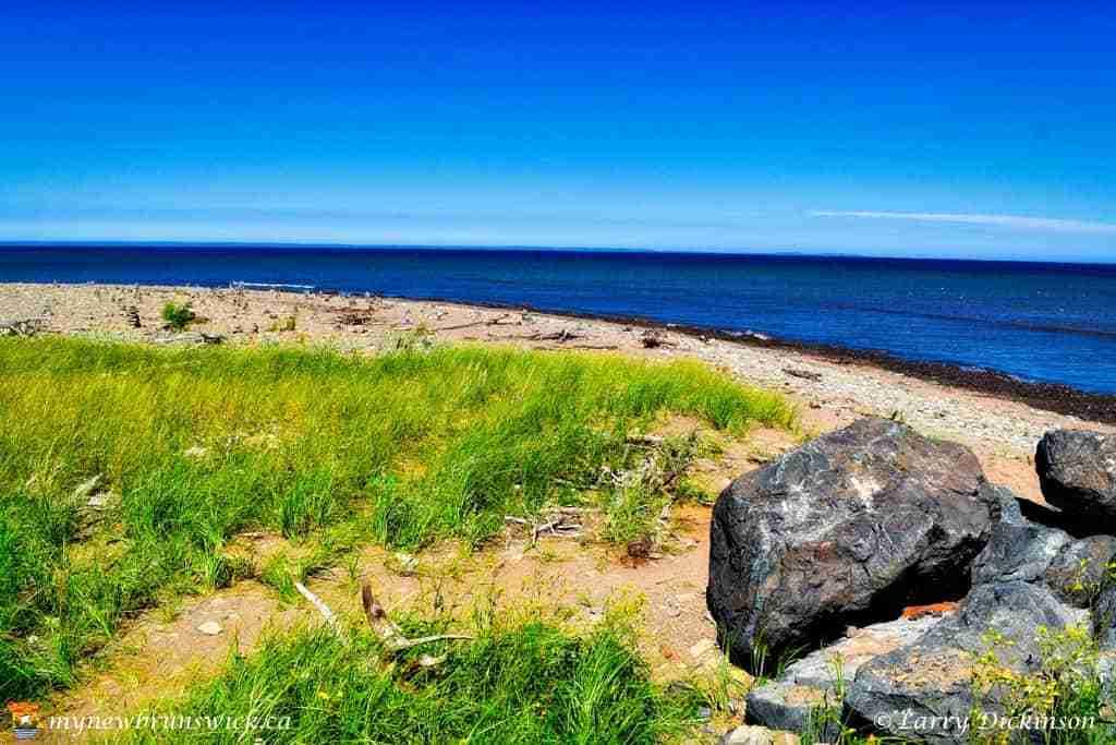 Miscou Island Coastline