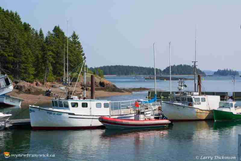Fishing Boats at Deer Islabnd NB