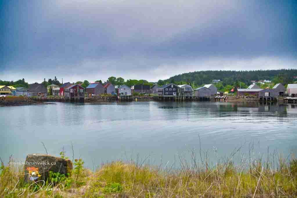 Seal Cove Herring Smoke Sheds
