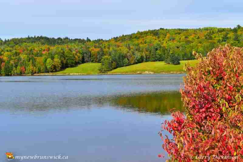 The leaves begin to change at Mactaquac