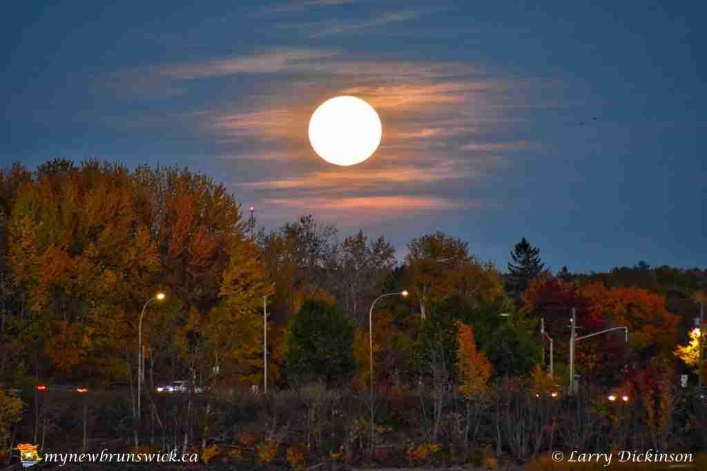 Hunter's Moon 2016
