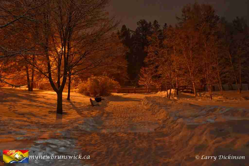 Night photo of Odell Park Fredericton after a light snow, December 2016