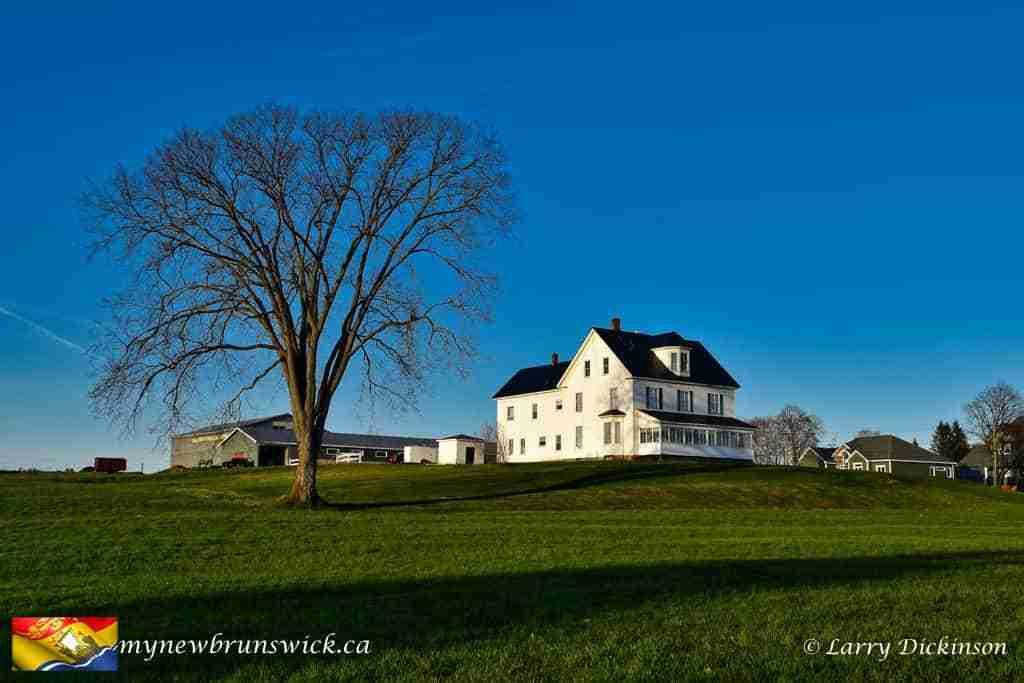 Neill Farm, Fredericton, NB