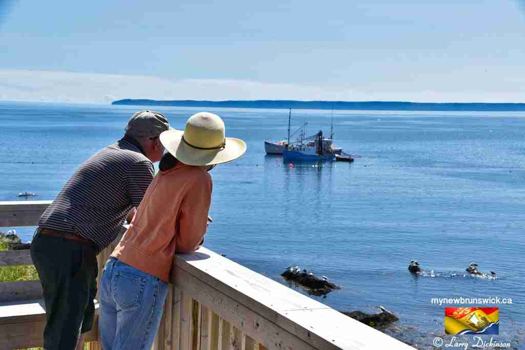 tourists at Herring Cove Campobello