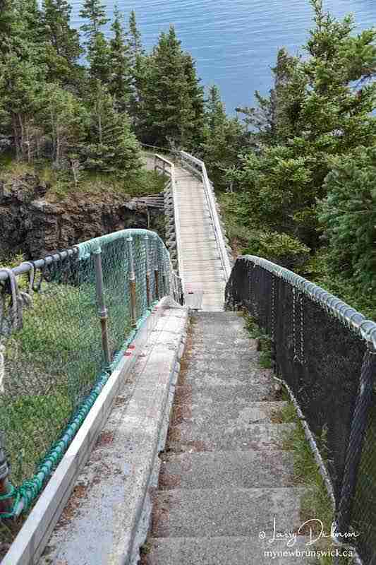 Swallowtail Lighthouse bridge